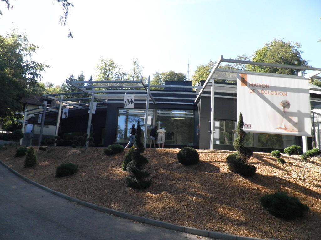 Zoo - Mulhouse - constructions & charpentes métalliques - Muller Rost